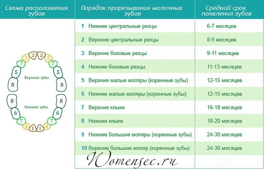 Симптомы прорезывания зубов у грудничка