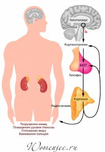 Психосоматика болезней: большая таблица заболеваний и как лечить